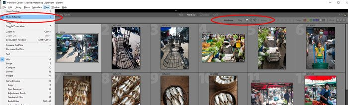 screen grab showing flag fitlers in Lightroom